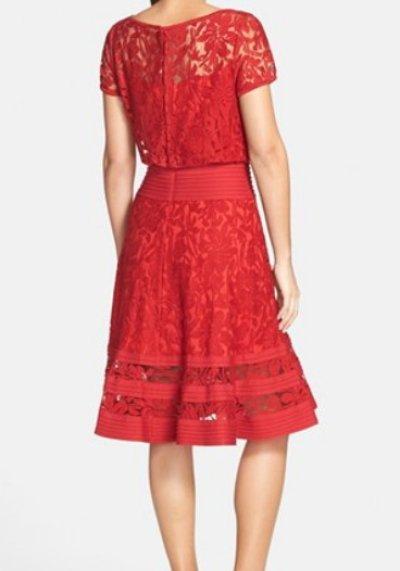 画像1: Tadashi Shoji     Embroidered Lace & Pintuck Blouson Dress フェザー